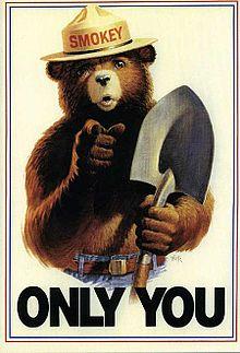 Медведь Смоки - символ охраны лесов от пожаров в США