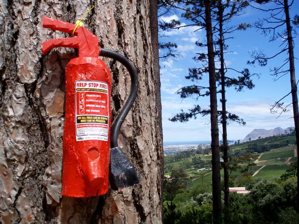 Деревянные огнетушители против лесных пожаров