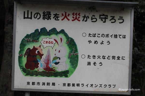 Зверушки тушат костер в лесу. Зверек слева идентификации не поддается, возможно белочка