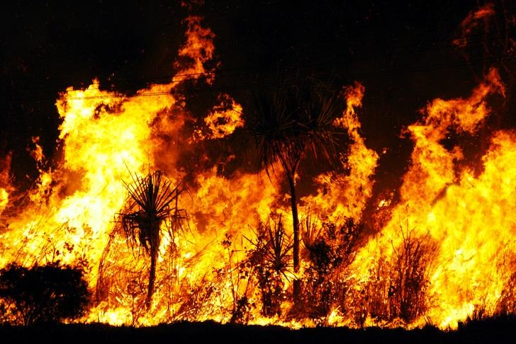 Степной пожар в Австралии